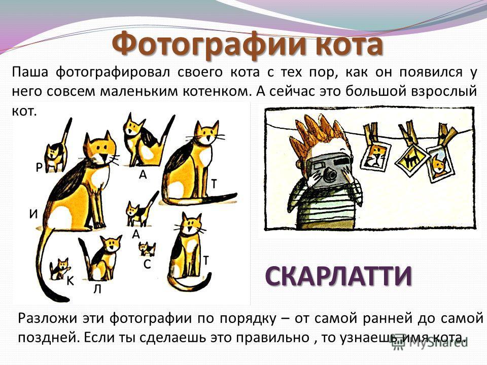 Коты на качелях У Люси живет много разных котов – больших и маленьких, толстых и худых. Котам нравится качаться на качелях в саду. Кого из котов нужно посадить на другой конец качелей, чтобы добиться равновесия?