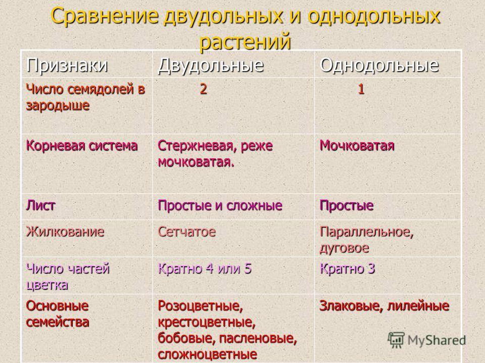 ПризнакиДвудольныеОднодольные Число семядолей в зародыше 2 1 Корневая система Стержневая, реже мочковатая. Мочковатая Лист Простые и сложные Простые ЖилкованиеСетчатое Параллельное, дуговое Число частей цветка Кратно 4 или 5 Кратно 3 Основные семейст