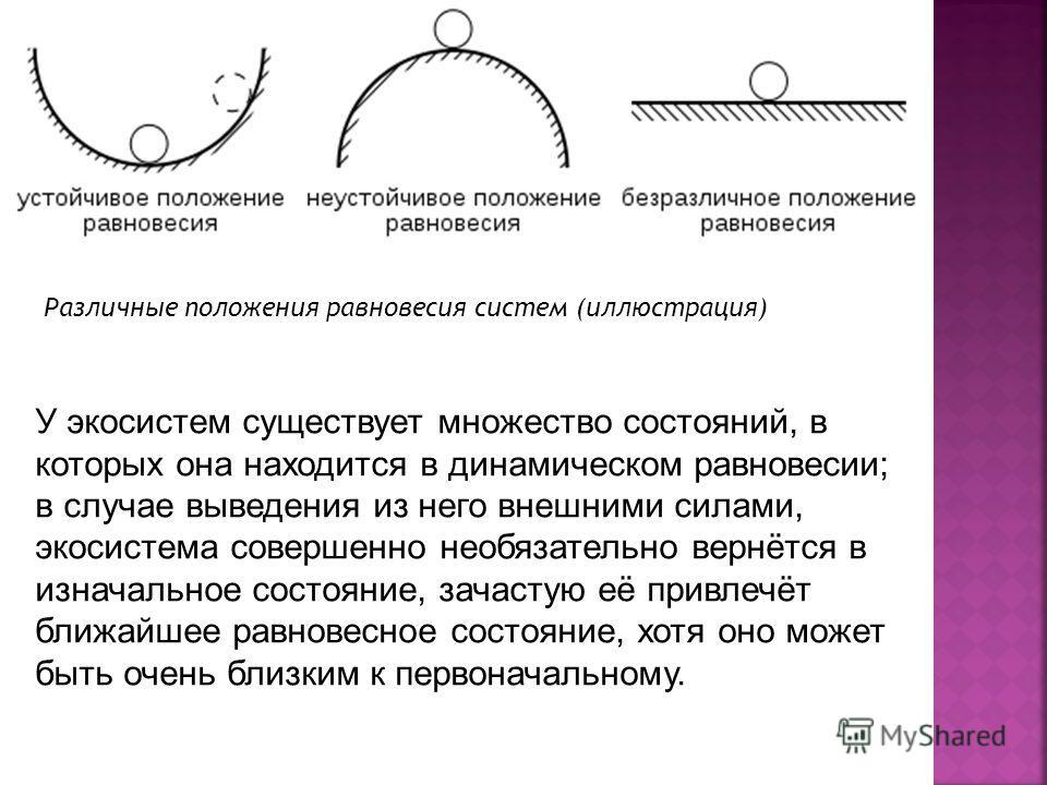 Различные положения равновесия систем (иллюстрация) У экосистем существует множество состояний, в которых она находится в динамическом равновесии; в случае выведения из него внешними силами, экосистема совершенно необязательно вернётся в изначальное