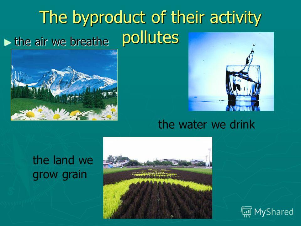 The byproduct of their activity pollutes the air we breathe the air we breathe the water we drink the land we grow grain
