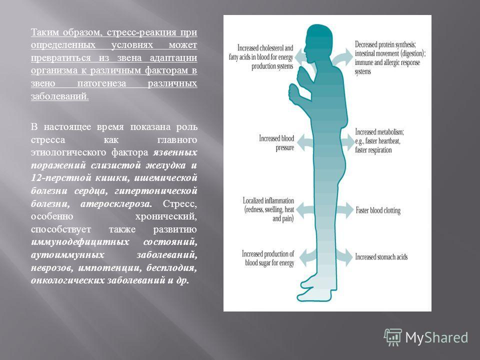 stressornie-mehanizmi-gipertonicheskoy-bolezni