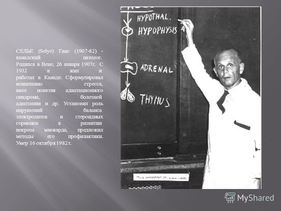 СЕЛЬЕ (Selye) Ганс (1907-82) - канадский патолог. Родился в Вене, 26 января 1907 г. С 1932 в жил и работал в Канаде. Сформулировал концепцию стресса, ввел понятия адаптационного синдрома, болезней адаптации и др. Установил роль нарушений баланса элек