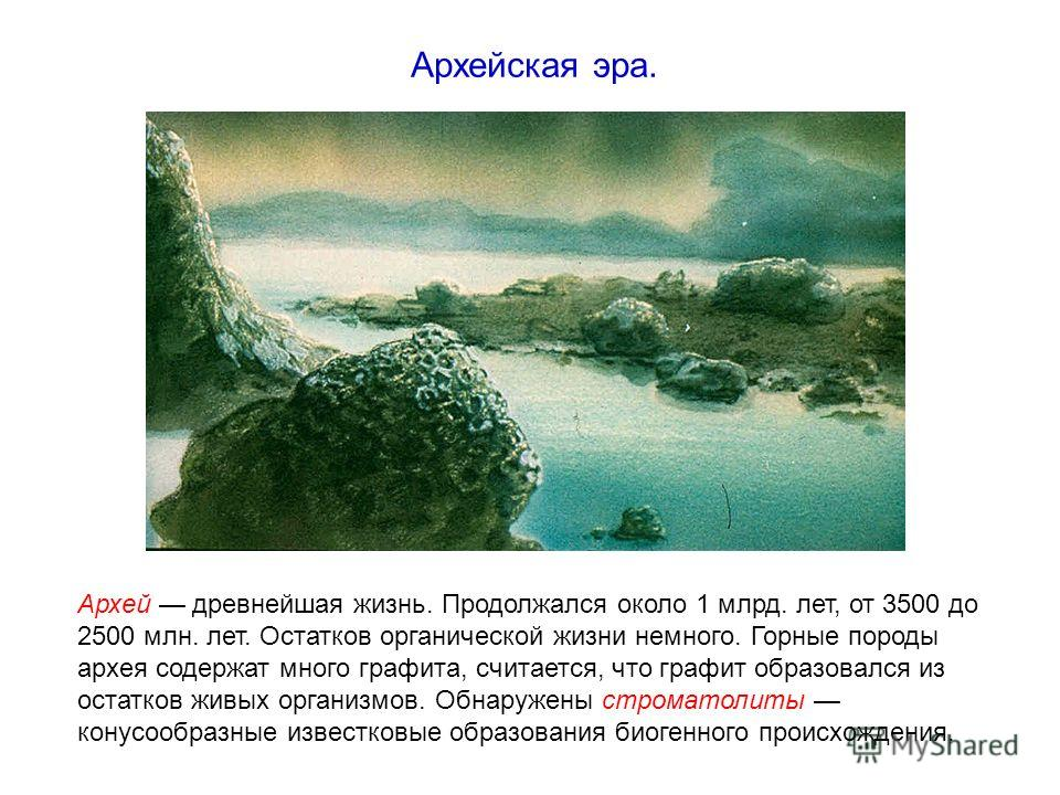 Архей древнейшая жизнь. Продолжался около 1 млрд. лет, от 3500 до 2500 млн. лет. Остатков органической жизни немного. Горные породы архея содержат много графита, считается, что графит образовался из остатков живых организмов. Обнаружены строматолиты