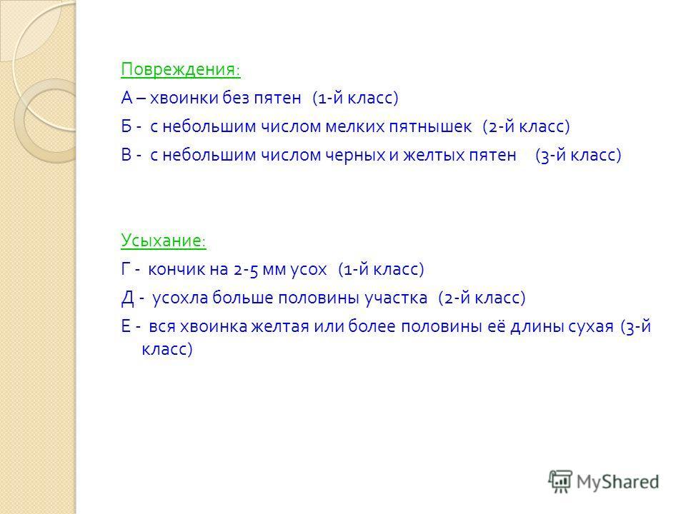 Повреждения : А – хвоинки без пятен (1- й класс ) Б - с небольшим числом мелких пятнышек (2- й класс ) В - с небольшим числом черных и желтых пятен (3- й класс ) Усыхание : Г - кончик на 2-5 мм усох (1- й класс ) Д - усохла больше половины участка (2