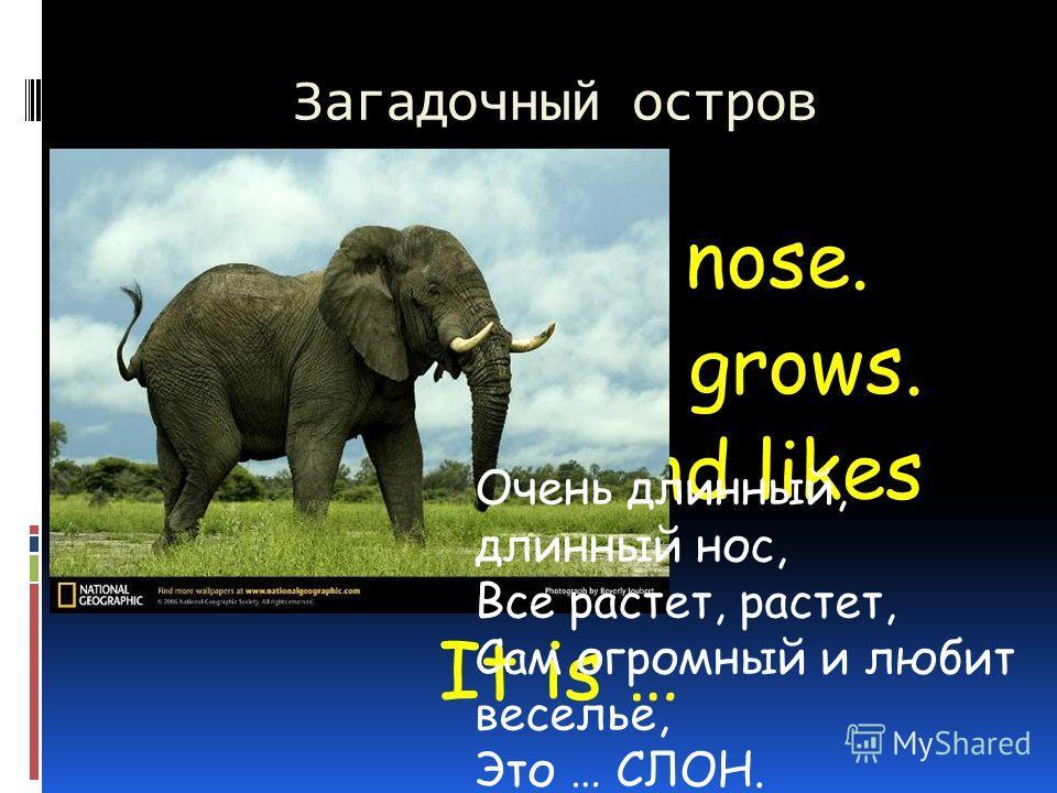 Загадочный остров A very long nose. It grows and grows. Не is huge and likes fun. It is … Очень длинный, длинный нос, Все растет, растет, Сам огромный и любит веселье, Это … СЛОН.