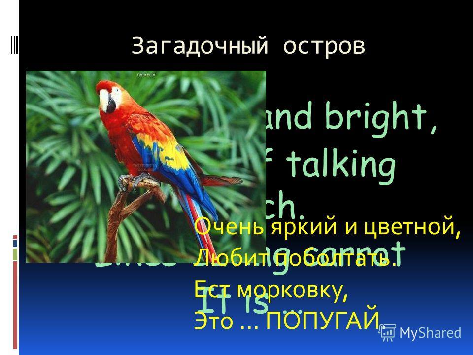 Загадочный остров So colorful and bright, Is fond of talking much. Likes eating carrot It is … Очень яркий и цветной, Любит поболтать. Ест морковку, Это … ПОПУГАЙ.
