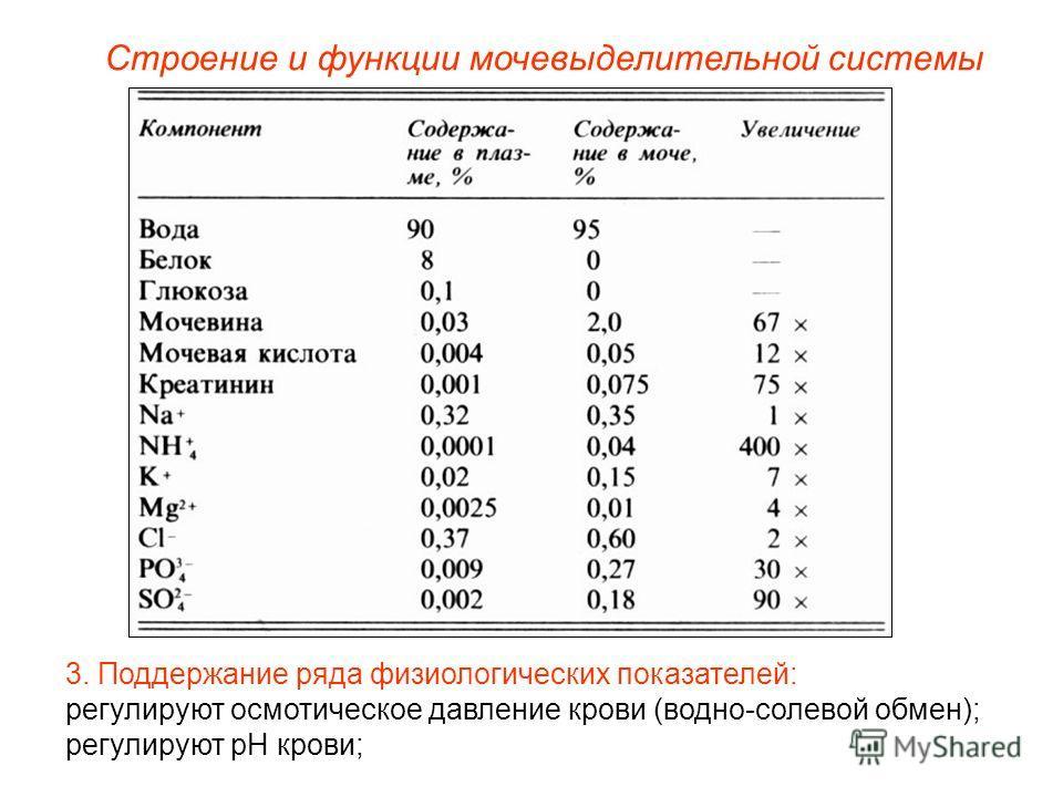 Строение и функции мочевыделительной системы 3. Поддержание ряда физиологических показателей: регулируют осмотическое давление крови (водно-солевой обмен); регулируют pH крови;