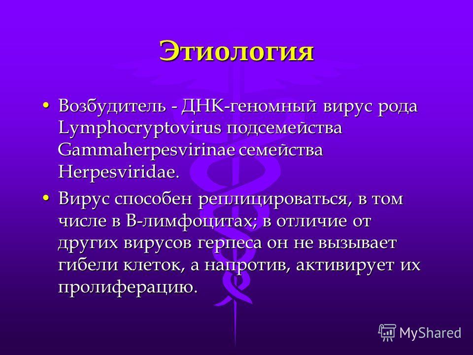 Этиология Возбудитель - ДНК-геномный вирус рода Lymphocryptovirus подсемейства Gammaherpesvirinae семейства Herpesviridae.Возбудитель - ДНК-геномный вирус рода Lymphocryptovirus подсемейства Gammaherpesvirinae семейства Herpesviridae. Вирус способен