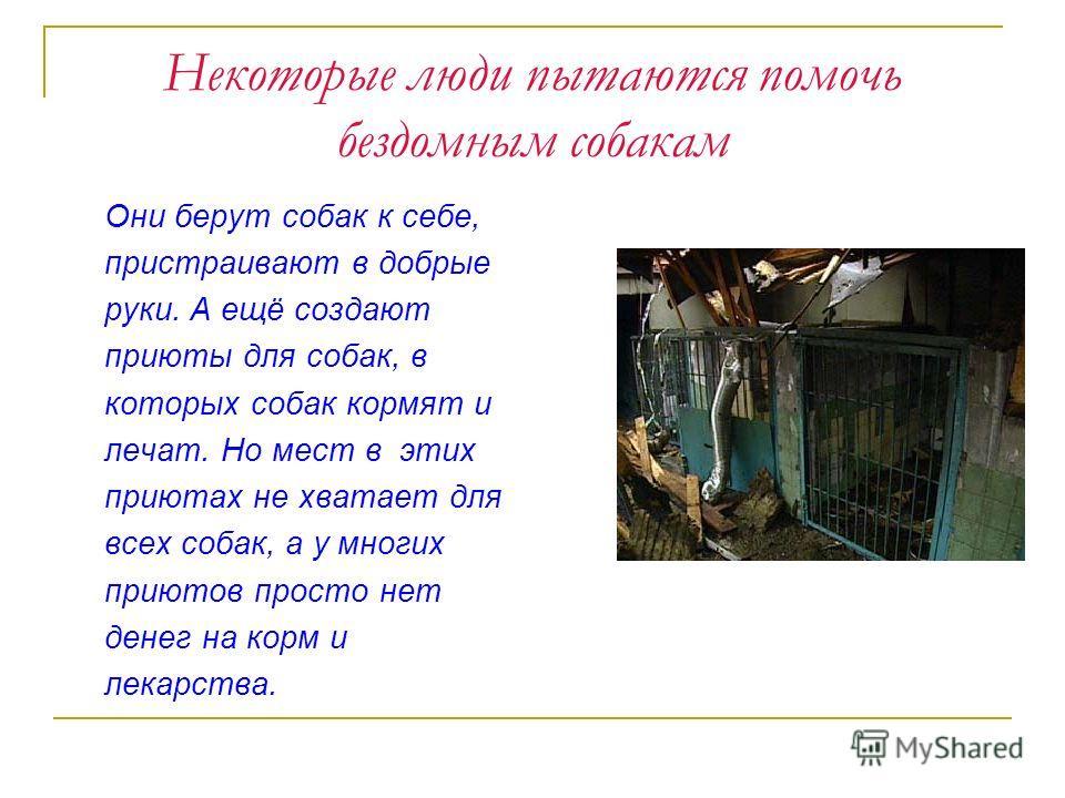 Некоторые люди пытаются помочь бездомным собакам Они берут собак к себе, пристраивают в добрые руки. А ещё создают приюты для собак, в которых собак кормят и лечат. Но мест в этих приютах не хватает для всех собак, а у многих приютов просто нет денег