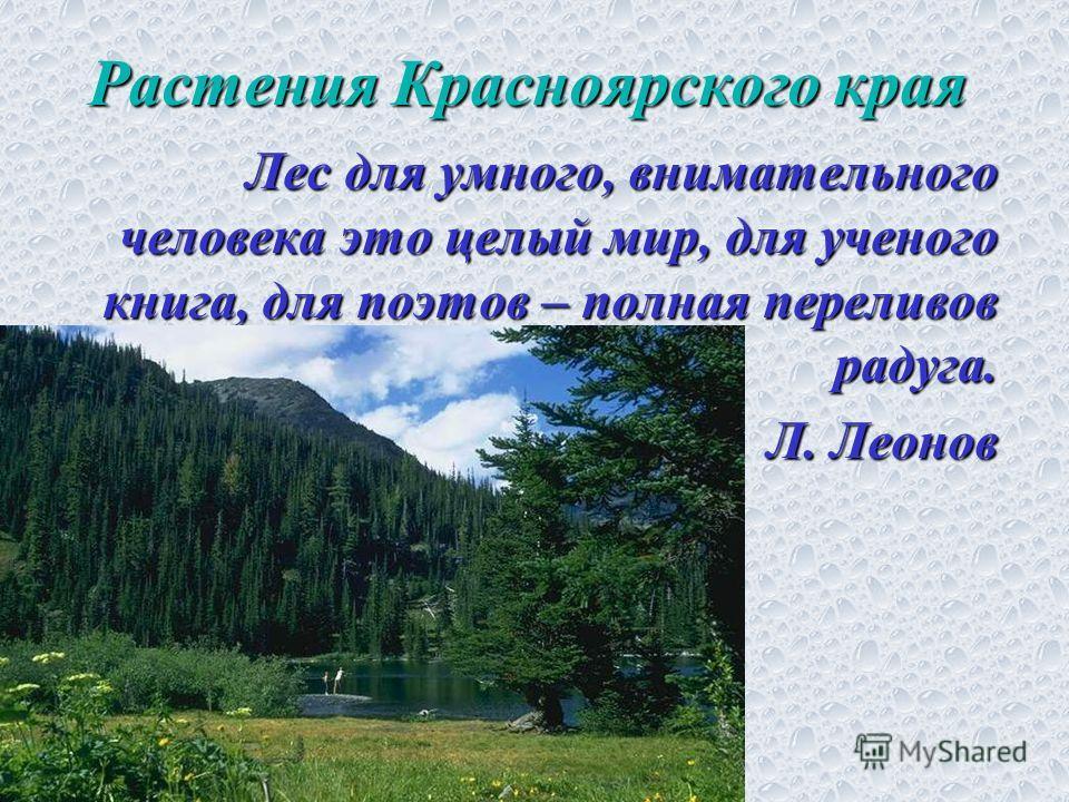 Растения Красноярского края Лес для умного, внимательного человека это целый мир, для ученого книга, для поэтов – полная переливов радуга. Л. Леонов Л. Леонов