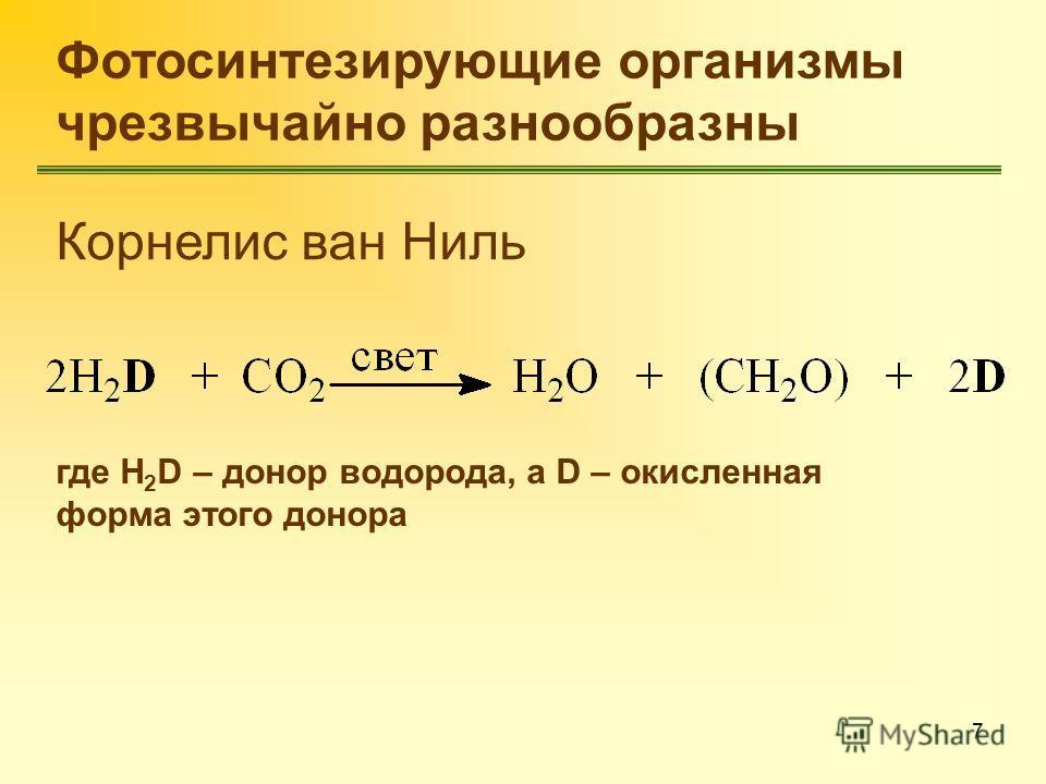 7 Корнелис ван Ниль где H 2 D – донор водорода, а D – окисленная форма этого донора