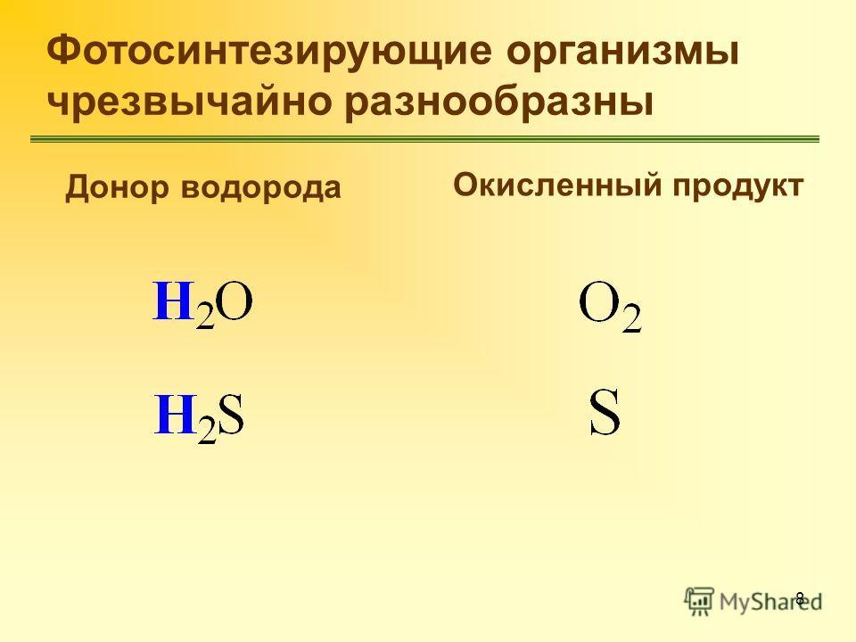 8 Фотосинтезирующие организмы чрезвычайно разнообразны Донор водорода Окисленный продукт