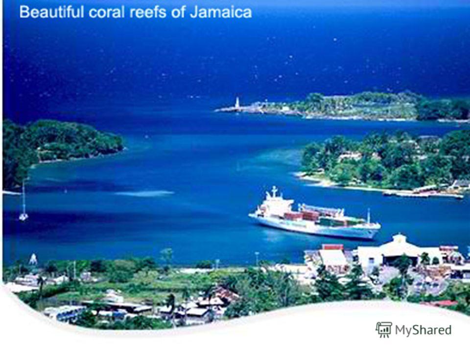 Characteristics of Coral Reefs