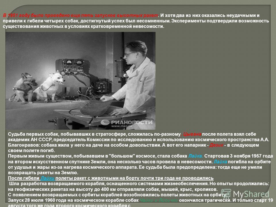 В 1951 году было проведено еще пять запусков высотных ракет. И хотя два из них оказались неудачными и привели к гибели четырех собак, достигнутый успех был несомненным. Эксперименты подтвердили возможность существования животных в условиях кратковрем