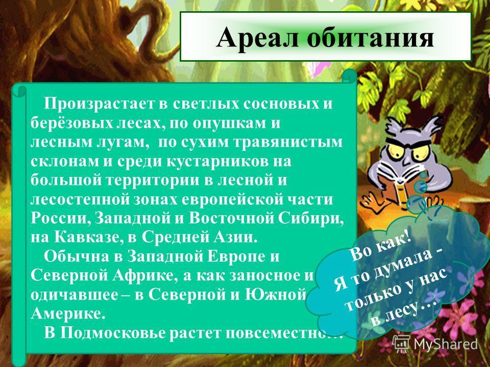 Ареал обитания Произрастает в светлых сосновых и берёзовых лесах, по опушкам и лесным лугам, по сухим травянистым склонам и среди кустарников на большой территории в лесной и лесостепной зонах европейской части России, Западной и Восточной Сибири, на