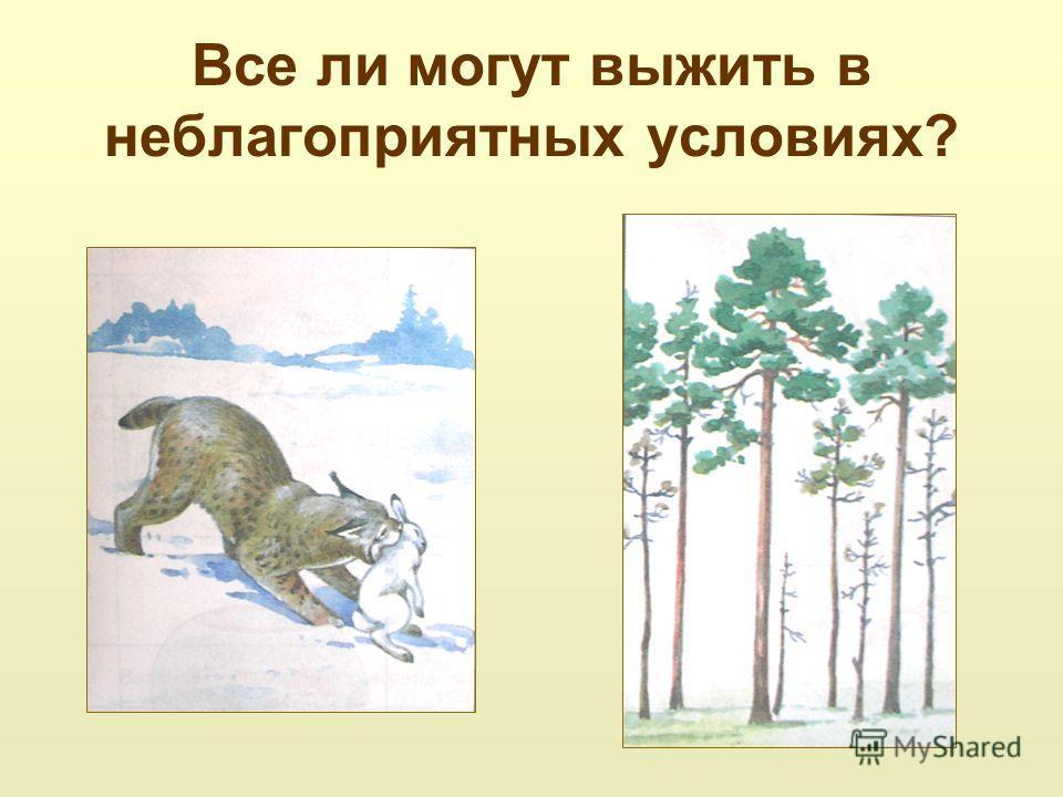 Презентация 5 класс природоведение как животные переносят неблагоприятные условия