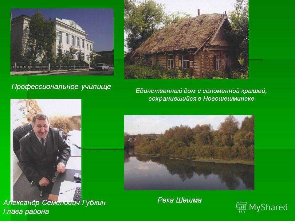 Профессиональное училище Единственный дом с соломенной крышей, сохранившийся в Новошешминске Александр Семенович Губкин Глава района Река Шешма