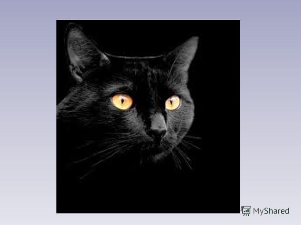 Черной ночью Черный кот Прыгнул Прямо в дымоход. В дымоходе чернота. Отыщи-ка там кота. Е. Измайлов