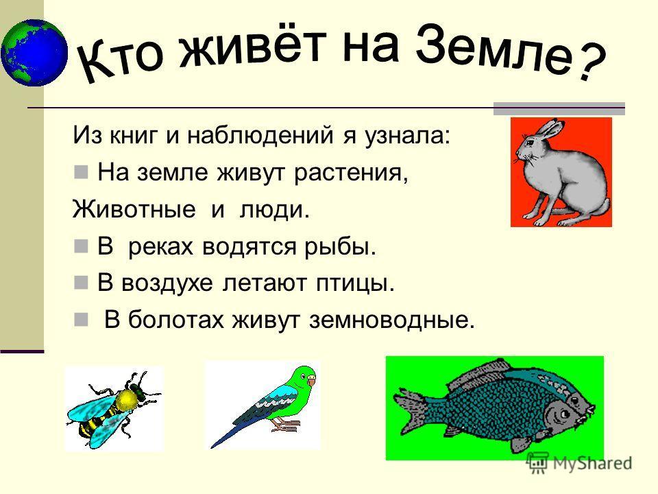Из книг и наблюдений я узнала: На земле живут растения, Животные и люди. В реках водятся рыбы. В воздухе летают птицы. В болотах живут земноводные.