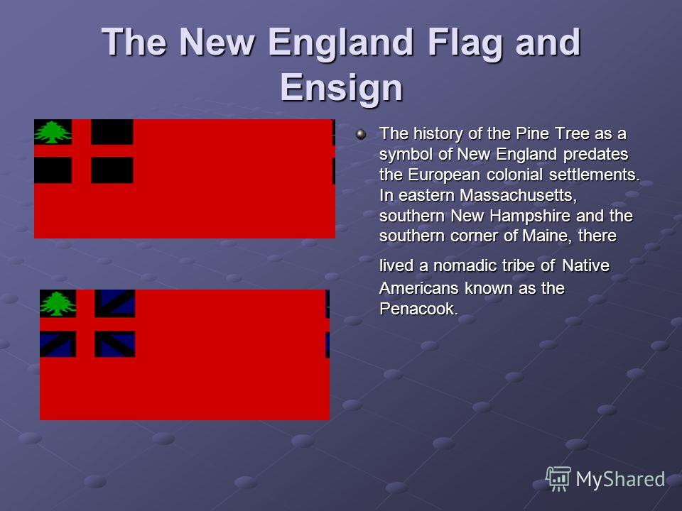 The New England Flag and Ensign The history of the Pine Tree as a symbol of New England predates the European colonial settlements. In eastern Massachusetts, southern New Hampshire and the southern corner of Maine, there lived a nomadic tribe of Nati
