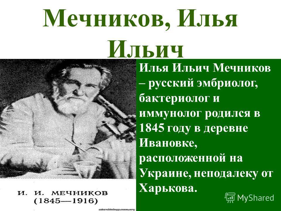 Мечников, Илья Ильич Илья Ильич Мечников – русский эмбриолог, бактериолог и иммунолог родился в 1845 году в деревне Ивановке, расположенной на Украине, неподалеку от Харькова.