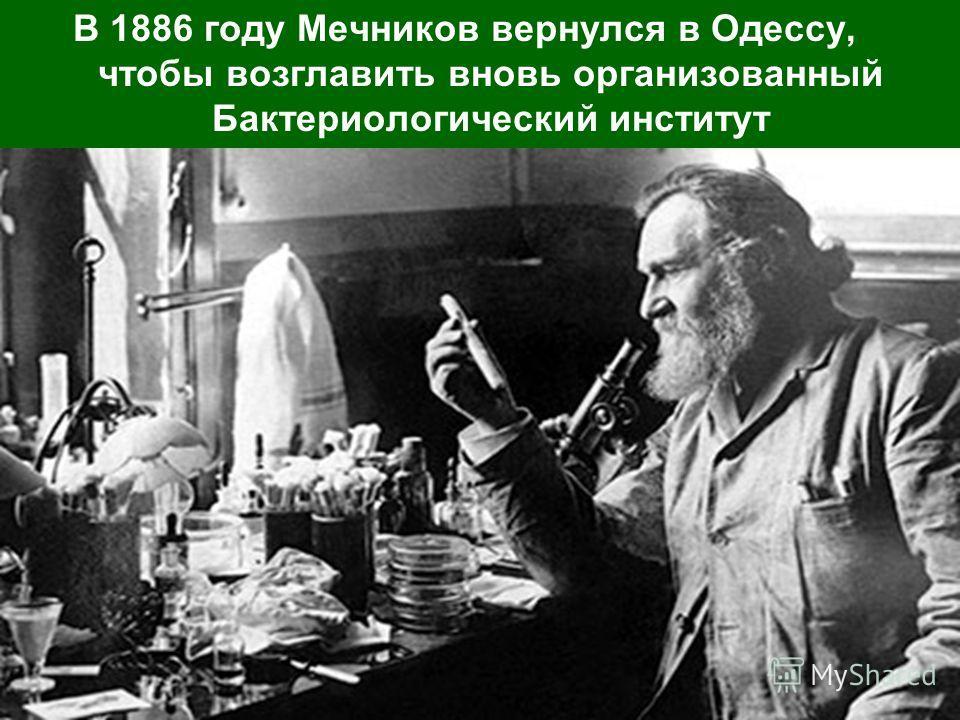 В 1886 году Мечников вернулся в Одессу, чтобы возглавить вновь организованный Бактериологический институт