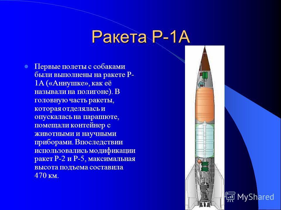 Ракета Р-1А Первые полеты с собаками были выполнены на ракете Р- 1А («Аннушке», как её называли на полигоне). В головную часть ракеты, которая отделялась и опускалась на парашюте, помещали контейнер с животными и научными приборами. Впоследствии испо
