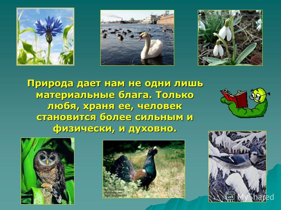 Природа дает нам не одни лишь