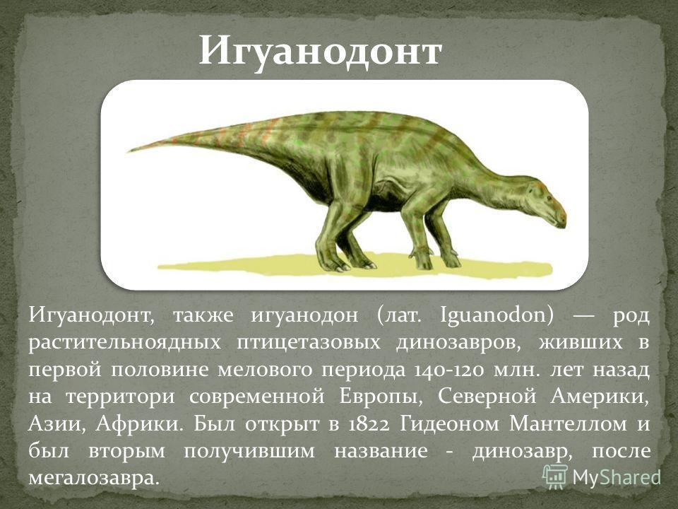 Игуанодонт, также игуанодон (лат. Iguanodon) род растительноядных птицетазовых динозавров, живших в первой половине мелового периода 140-120 млн. лет назад на территори современной Европы, Северной Америки, Азии, Африки. Был открыт в 1822 Гидеоном Ма