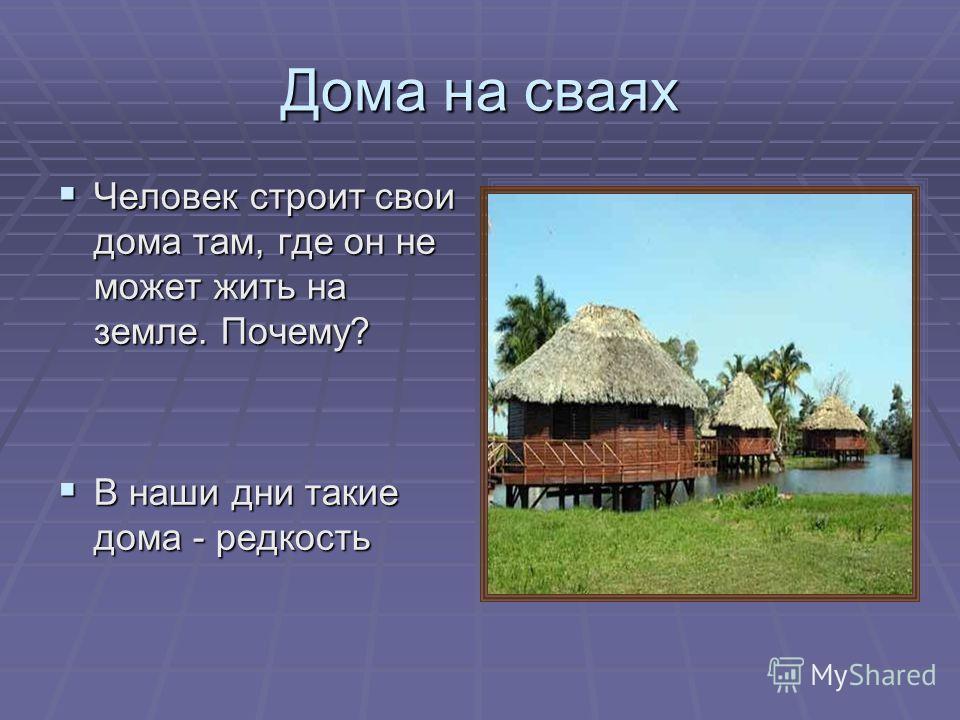 Дома на сваях Человек строит свои дома там, где он не может жить на земле. Почему? Человек строит свои дома там, где он не может жить на земле. Почему? В наши дни такие дома - редкость В наши дни такие дома - редкость