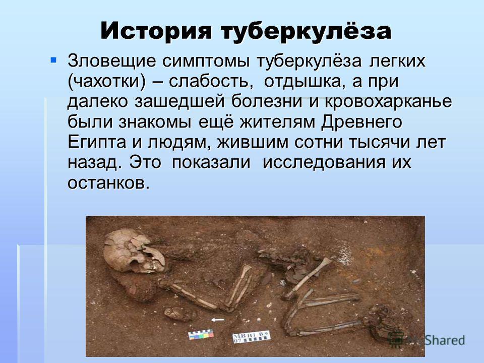 История туберкулёза Зловещие симптомы туберкулёза легких (чахотки) – слабость, отдышка, а при далеко зашедшей болезни и кровохарканье были знакомы ещё жителям Древнего Египта и людям, жившим сотни тысячи лет назад. Это показали исследования их останк