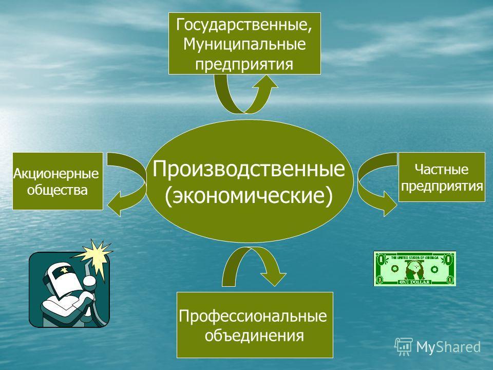Производственные (экономические) Акционерные общества Государственные, Муниципальные предприятия Профессиональные объединения Частные предприятия