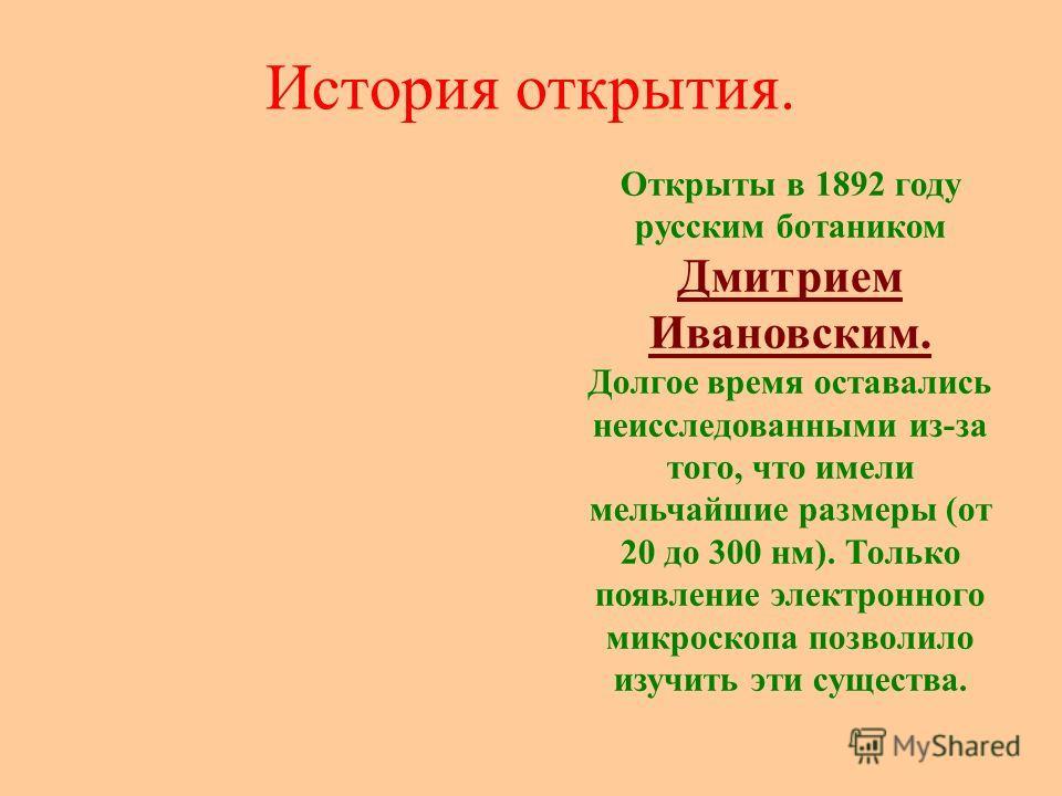 История открытия. Открыты в 1892 году русским ботаником Дмитрием Ивановским. Долгое время оставались неисследованными из-за того, что имели мельчайшие размеры (от 20 до 300 нм). Только появление электронного микроскопа позволило изучить эти существа.