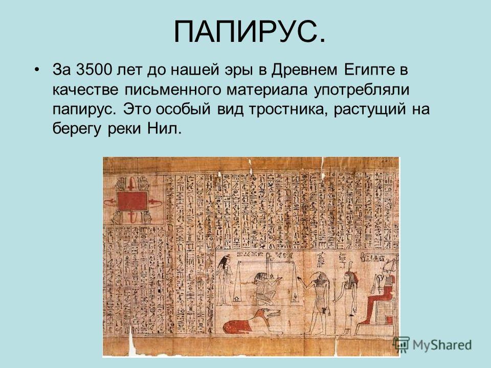 ПАПИРУС. За 3500 лет до нашей эры в Древнем Египте в качестве письменного материала употребляли папирус. Это особый вид тростника, растущий на берегу реки Нил.