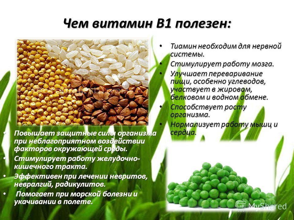 Чем витамин В1 полезен: Повышает защитные силы организма при неблагоприятном воздействии факторов окружающей среды. Повышает защитные силы организма при неблагоприятном воздействии факторов окружающей среды. Стимулирует работу желудочно- кишечного тр