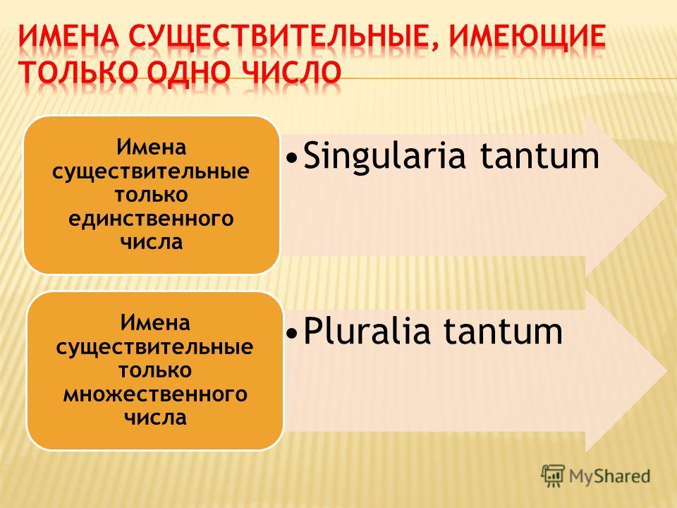 Singularia tantum Имена существительные только единственного числа Pluralia tantum Имена существительные только множественного числа