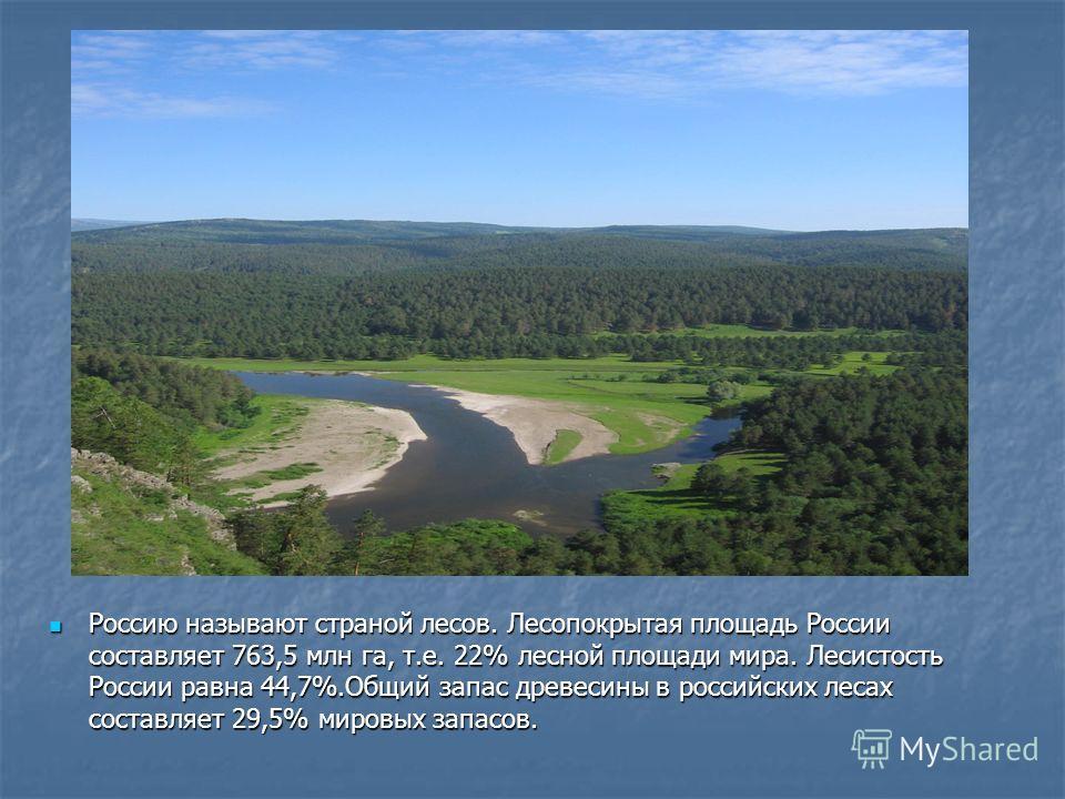 Россию называют страной лесов. Лесопокрытая площадь России составляет 763,5 млн га, т.е. 22% лесной площади мира. Лесистость России равна 44,7%.Общий запас древесины в российских лесах составляет 29,5% мировых запасов. Россию называют страной лесов.