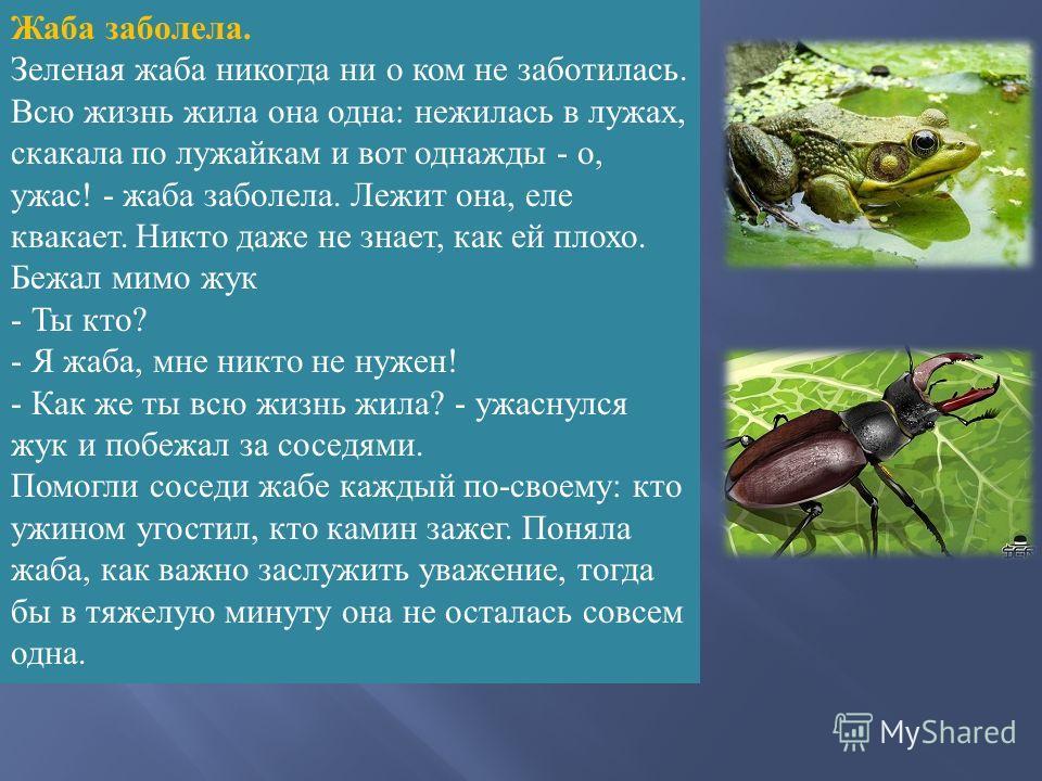 Жаба заболела. Зеленая жаба никогда ни о ком не заботилась. Всю жизнь жила она одна : нежилась в лужах, скакала по лужайкам и вот однажды - о, ужас ! - жаба заболела. Лежит она, еле квакает. Никто даже не знает, как ей плохо. Бежал мимо жук - Ты кто