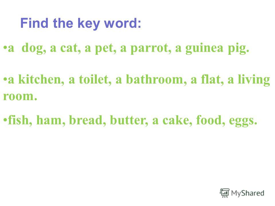 Find the key word: a dog, a cat, a pet, a parrot, a guinea pig. a kitchen, a toilet, a bathroom, a flat, a living room. fish, ham, bread, butter, a cake, food, eggs.