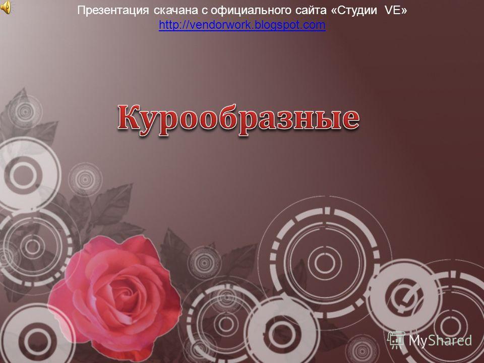 Презентация скачана с официального сайта «Студии VE» http://vendorwork.blogspot.com