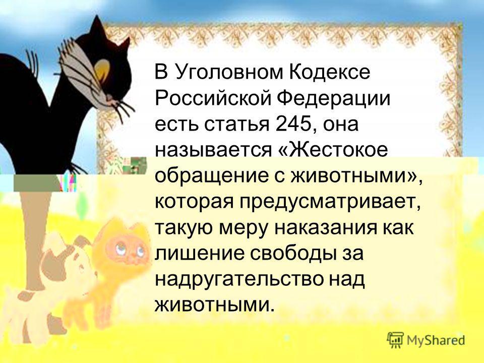 В Уголовном Кодексе Российской Федерации есть статья 245, она называется «Жестокое обращение с животными», которая предусматривает, такую меру наказания как лишение свободы за надругательство над животными.