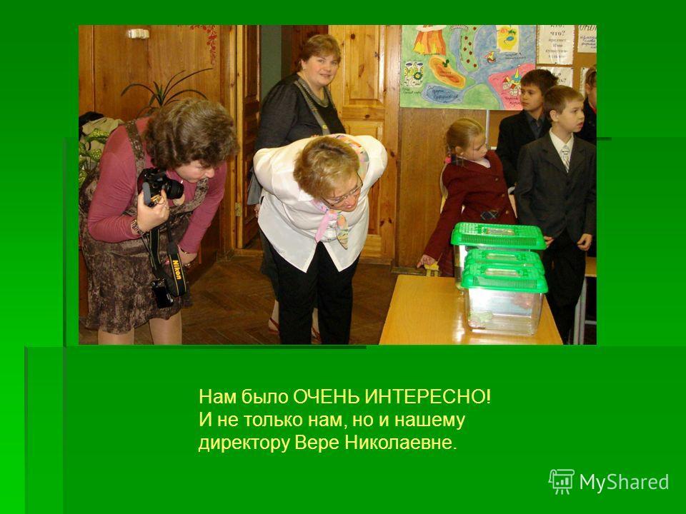 Нам было ОЧЕНЬ ИНТЕРЕСНО! И не только нам, но и нашему директору Вере Николаевне.