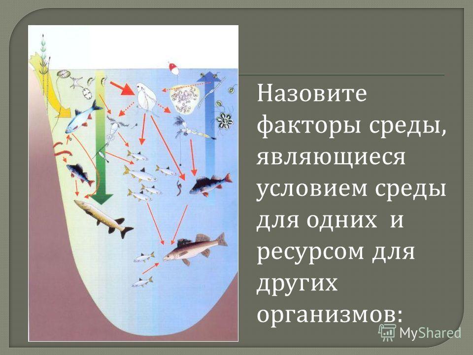 Назовите факторы среды, являющиеся условием среды для одних и ресурсом для других организмов :