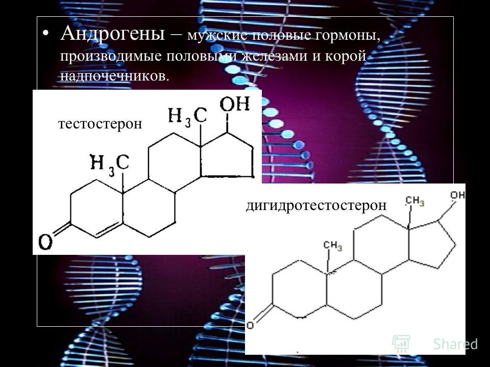 Андрогены – мужские половые гормоны, производимые половыми железами и корой надпочечников. тестостерон дигидротестостерон