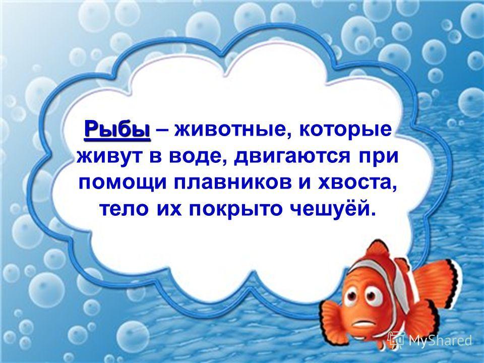 Рыбы Рыбы – животные, которые живут в воде, двигаются при помощи плавников и хвоста, тело их покрыто чешуёй.