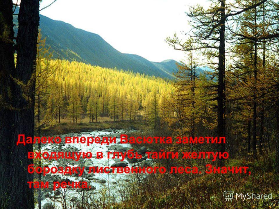 Далеко впереди Васютка заметил входящую в глубь тайги желтую бороздку лиственного леса. Значит, там речка.