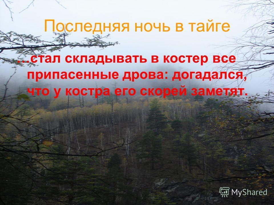 Последняя ночь в тайге …стал складывать в костер все припасенные дрова: догадался, что у костра его скорей заметят.