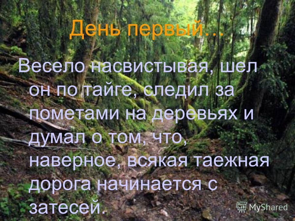 День первый… Весело насвистывая, шел он по тайге, следил за пометами на деревьях и думал о том, что, наверное, всякая таежная дорога начинается с затесей.