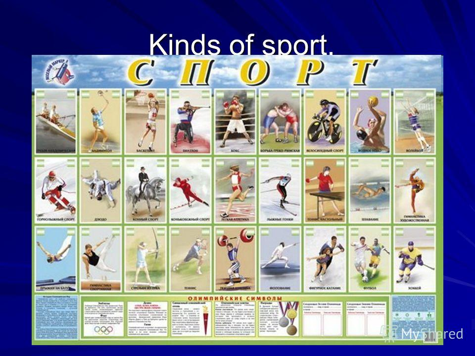 Kinds of sport. Kinds of sport.