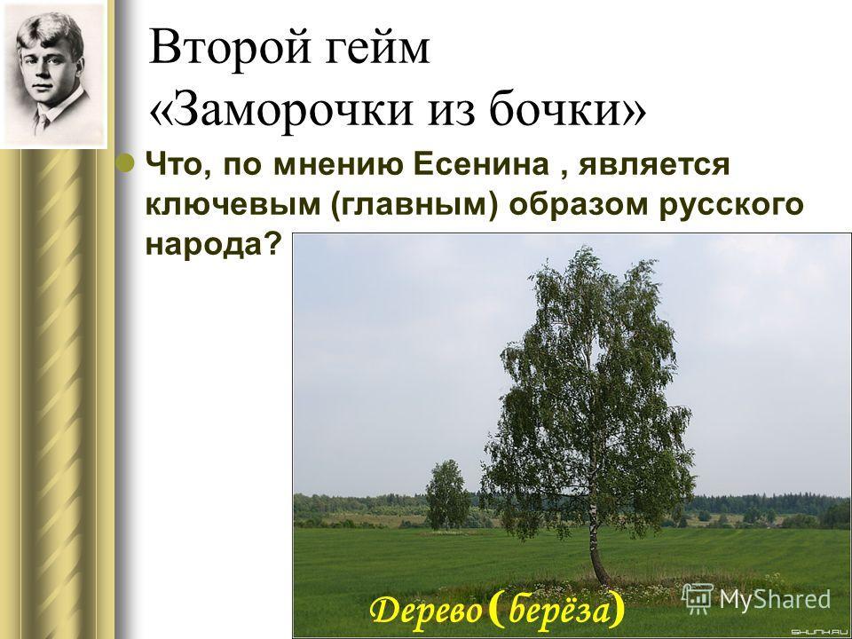 Второй гейм «Заморочки из бочки» Что, по мнению Есенина, является ключевым (главным) образом русского народа? Дерево ( берёза )
